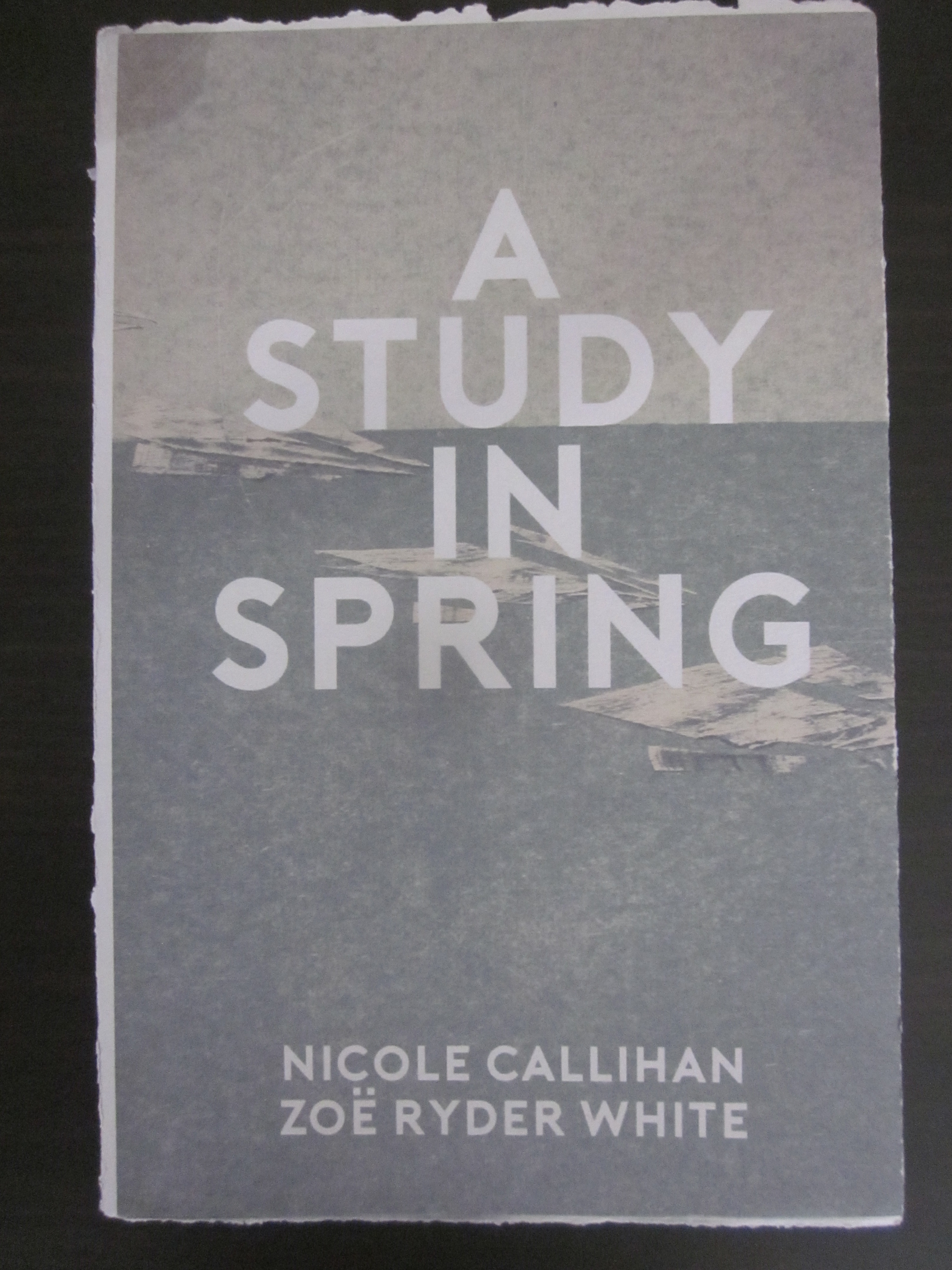 A Study in Spring by Nicole Callihan & Zoe Ryder White