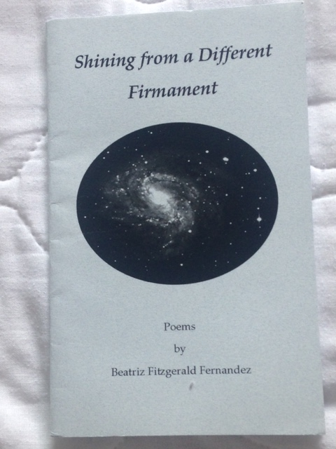 Shining from a Different Firmament by Beatriz F. Fernandez